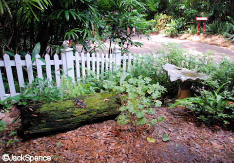 Simulated Backyard
