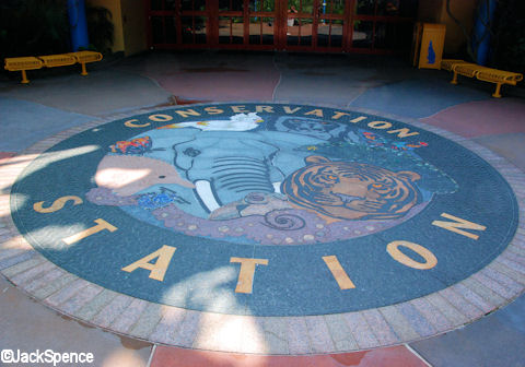 Conservation Station Rockwork