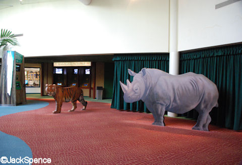 Conservation Station Main Room