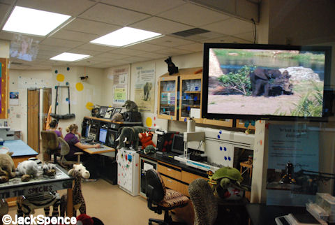 Wildlife Tracking Center