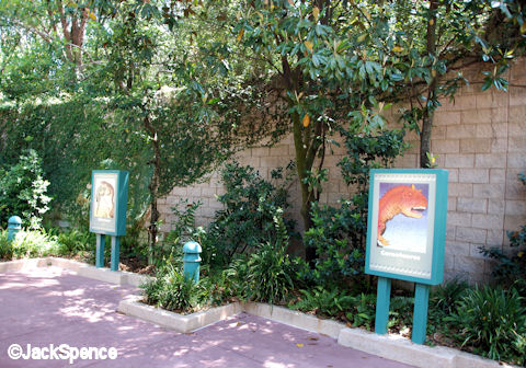 Dinoland USA Animal Kingdom