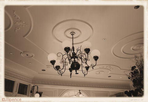 Ceiling and Light Fixture