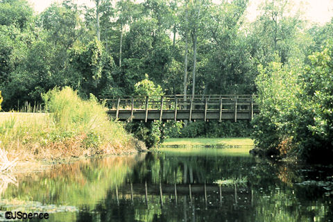 Fort Wilderness Railroad Bridge