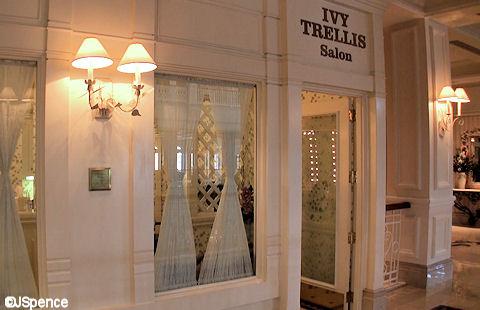 Ivy Trellis Salon