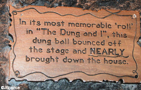 Dung Plaque