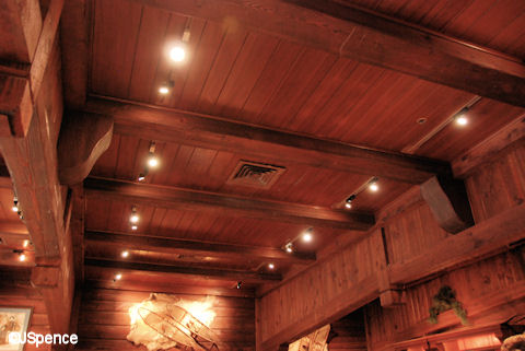 Norway Pavilion Ceiling