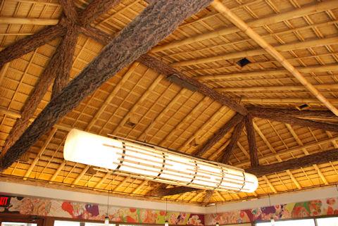 Japan Pavilion Ceiling