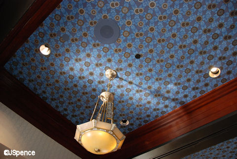 Mouse House Ceiling