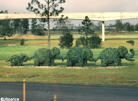 Fake Topiary