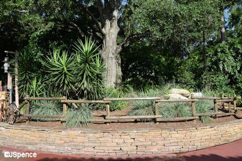 Frontierland Landscaping