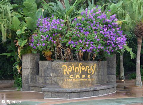 Rain Forest Café