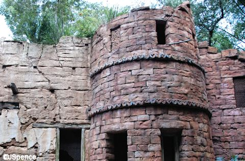 Flights of Wonder