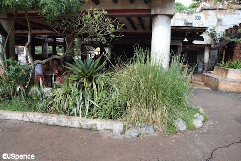 Harambe Landscaping