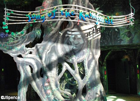 Song of the Rainforest