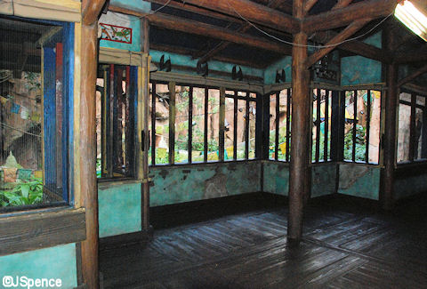 Bat Viewing Area