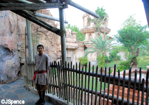 Duck Blind - Tiger Blind