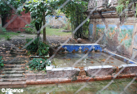 Tiger Hunting Grounds