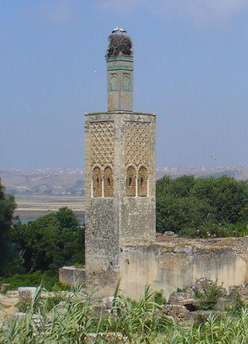 Chellah Minaret - Chellah