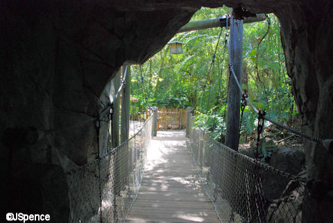 Bridge and Cave