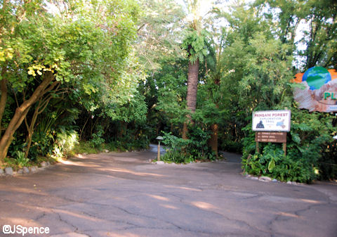 Pangani Forest Exploration Trail Entrance