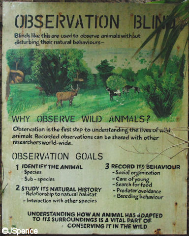 Observation Blind Sign