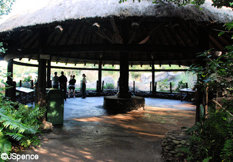 Meerkat Viewing Area