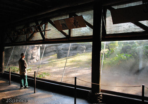 Gorilla Research Center