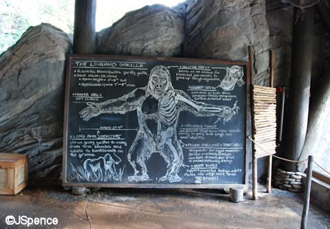 Gorilla Facts and Figures (Chalkboard)