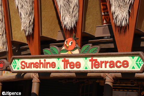 Sunshine Tree Terrace Sign