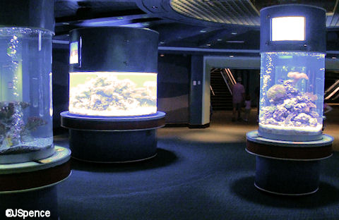 New Aquariums