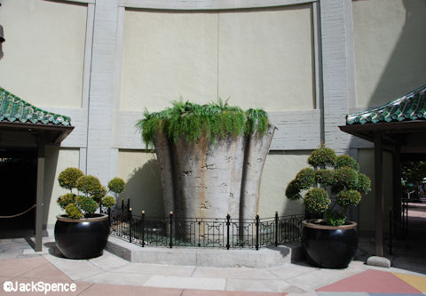 Courtyard Garden & Water Feature