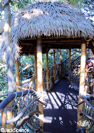 Treehouse Pathway
