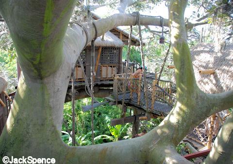 Treeshouse Stairs