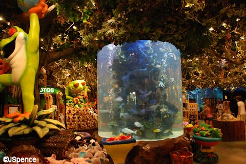 Rain Forest Café Aquarium