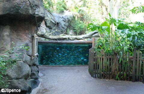 Pangani Aquarium
