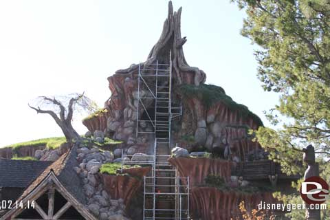 Disneyland Resort Photo Update - 2/14/14