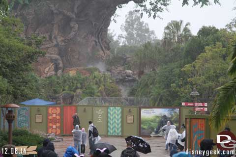 Animal Kingdom at WDW Construction Update