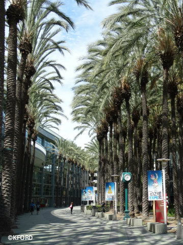 Disney-D23-Expo-Outside-Anaheim-Convention-Center.jpg