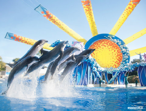 Seaworld-blue-horizons.jpg
