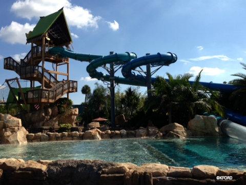 aquatica-dolphin-plunge.jpg