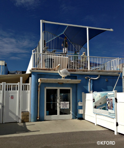 clearwater-marine-aquarium-entrance-in-movie.jpg