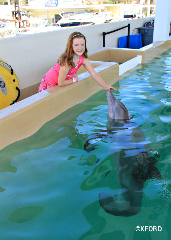 clearwater-marine-aquarium-lauren-petting-winter.jpg