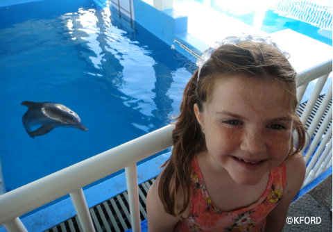 clearwater-marine-aquarium-lauren-winter-2011.jpg