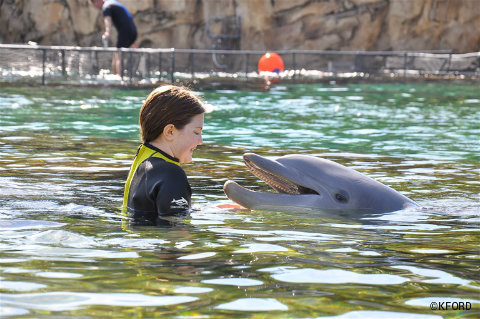 discovery-cove-lauren-interacts-with-dolphin.jpg
