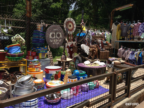 disney-animal-kingdom-harambe-market-goods.jpg