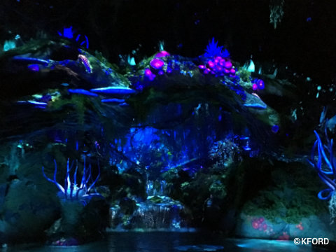 Disney Animal Kingdom Pandora Avatar Navi River Journey