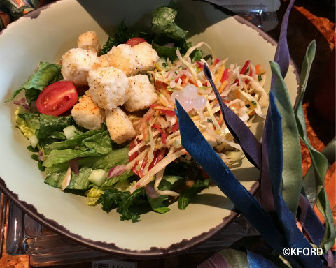 disney-animal-kingdom-pandora-satuli-canteen-tofu-salad.jpg