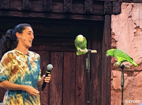 disney-animal-kingdom-up-bird-adventure-singing-birds.jpg