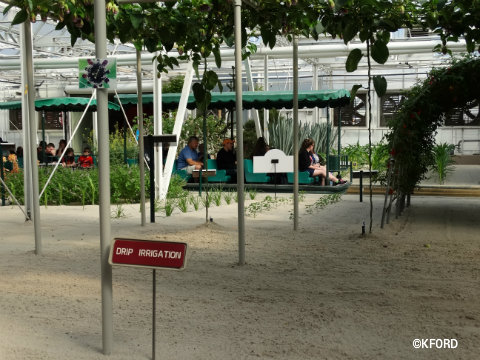 disney-epcot-behind-the-seeds-tour-drip-irrigation.jpg