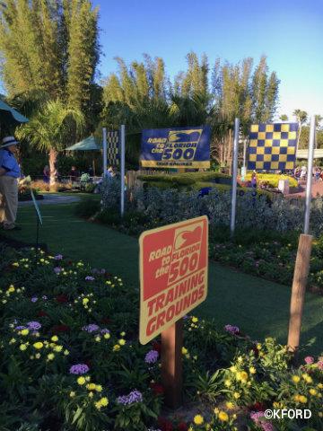 disney-epcot-flower-garden-cars-play-garden.jpg